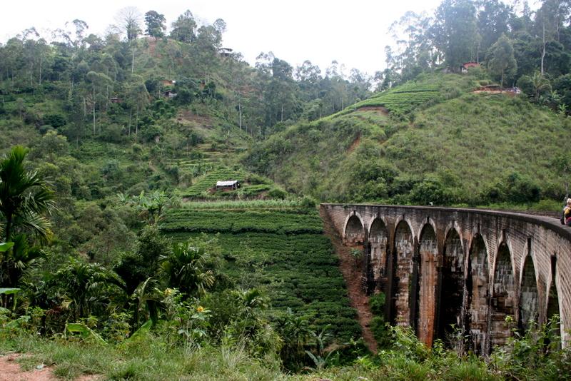 voyage, sri lanka, travel, lifestyle blog, rock my casbah, ella, nuwara eliya