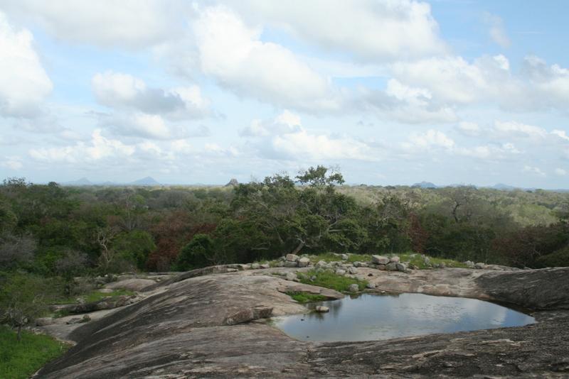 voyage, travel, sri lanka, rock my casbah, blog, lifstyle blog, yala parc