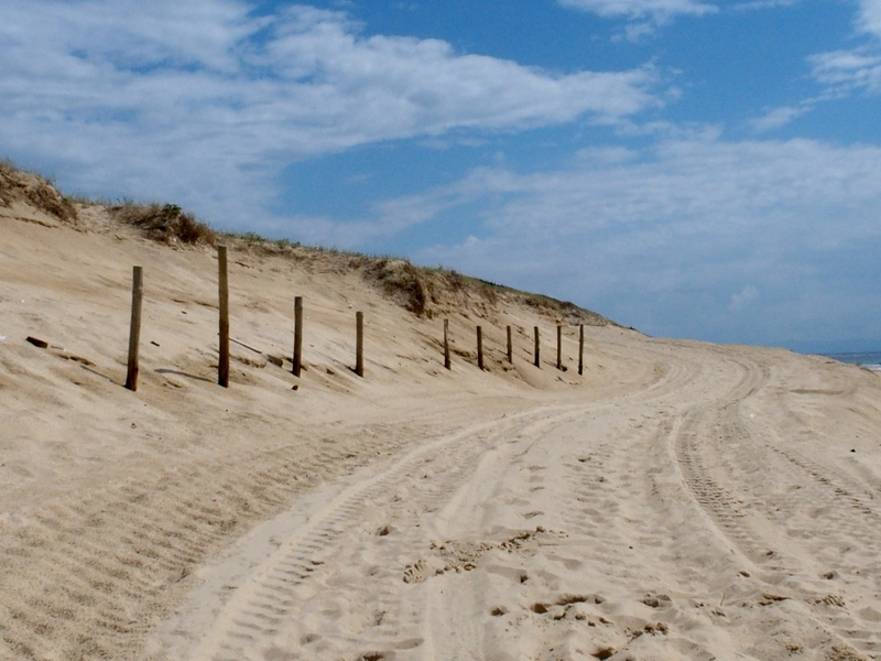 seignosse plage océan surf