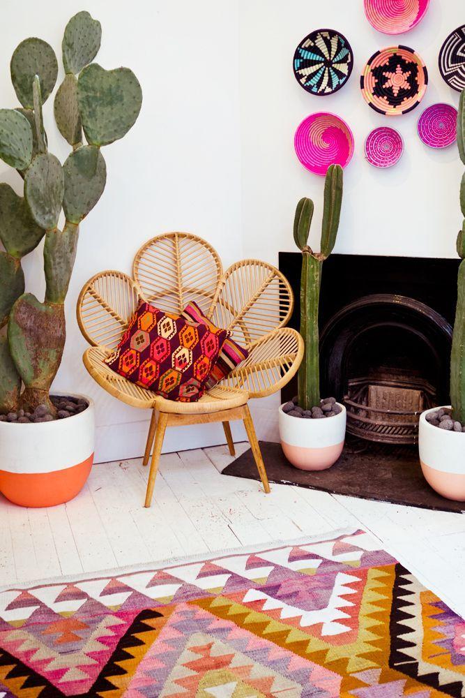 plantes et déco décoration inspiration plantes d'intérieur cactus maison blog déco