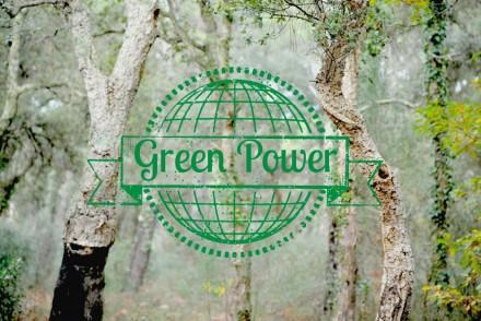 gestes pour l'environnement