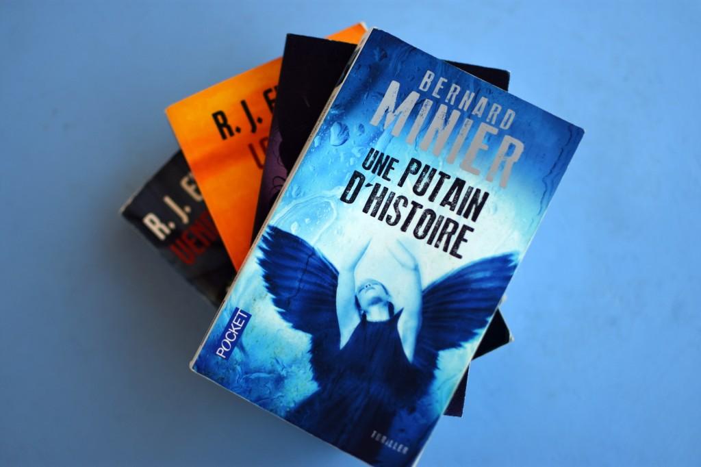 romans-policiers-polar-à-lire