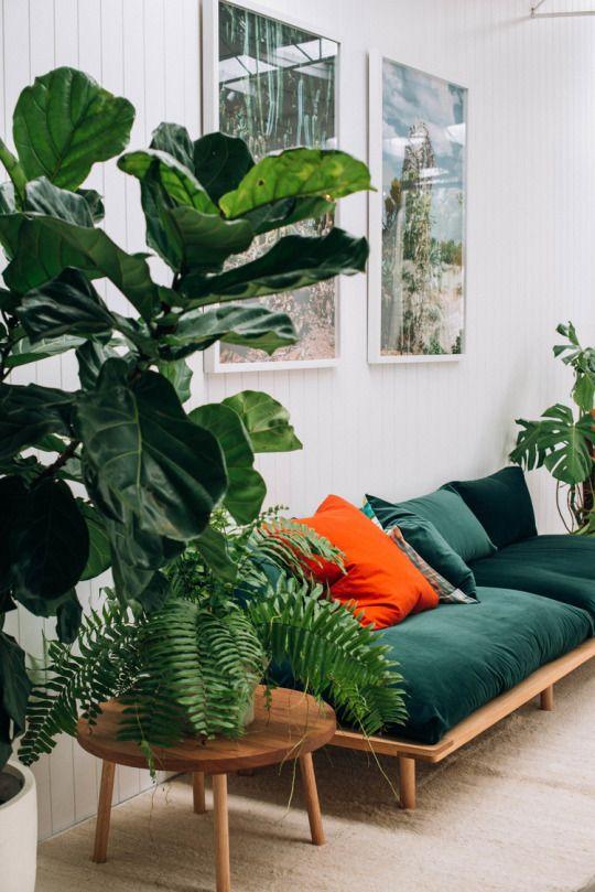 canapé-vert-design