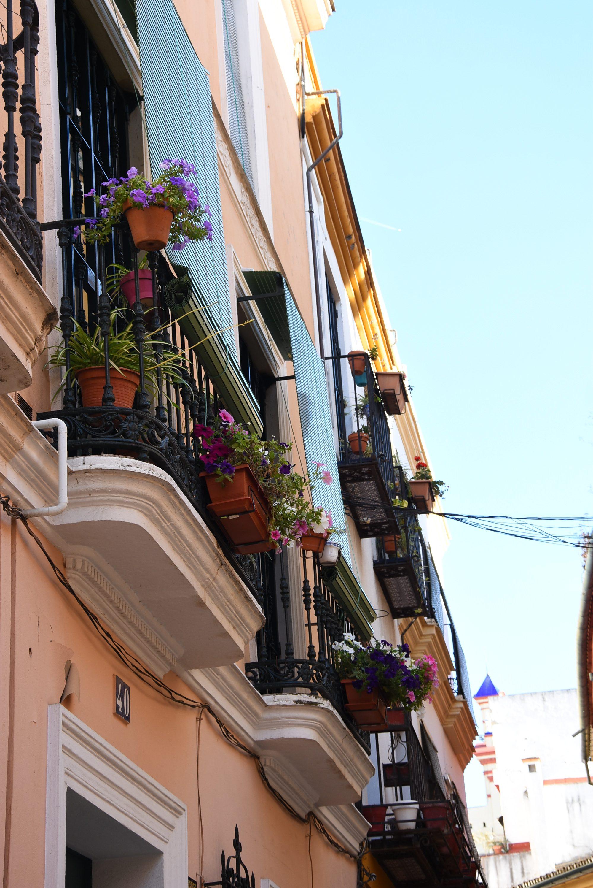 balcon-fleuri-séville