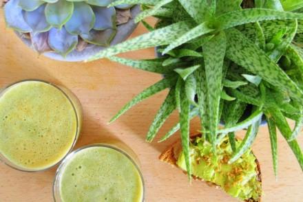 recette green juice jus vert alcalin detox healthy blog toulouse