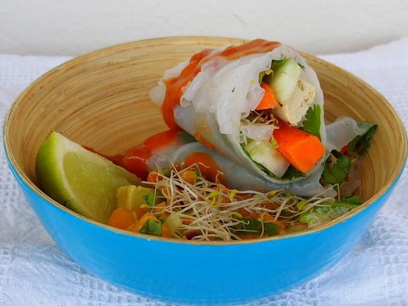 rouleaux de printemps veggie végétarien blog culinaire healthy blogueuse toulouse